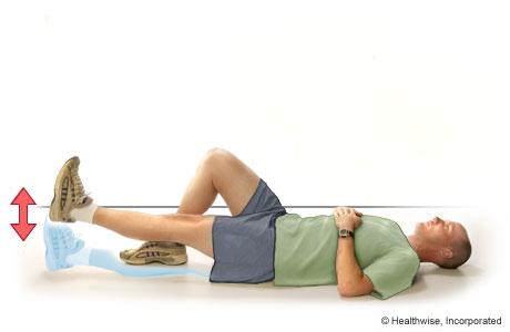 Quadriceps Exercises Exercise For Quadriceps